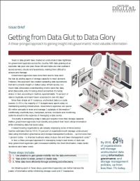 Getting from Data Glut to Data Glory
