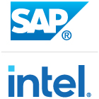 SAP Public Services, Inc. | Intel