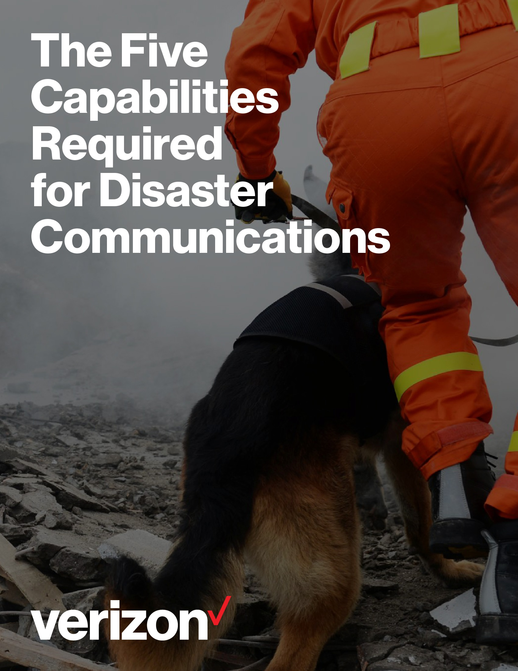 Five Capabilities Required for Disaster Communications